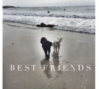 Best Friends Travel Tips