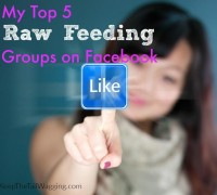 Cute young woman is touching the like button