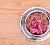Fresh nutritious and delicious minced raw meat and bone dog food in bowl