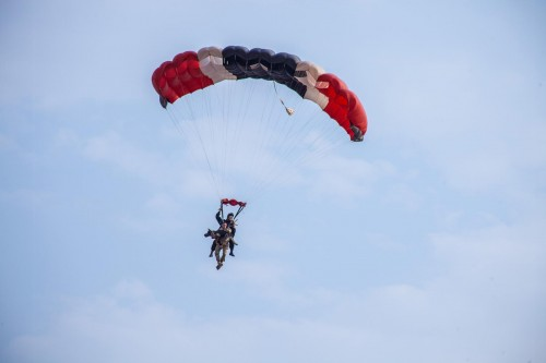 01_skydiving_dogs-ngsversion-1476820810837-adapt-1900-1