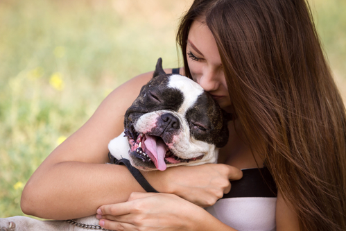 Teenage brunette girl playing with her healthy young bulldog in the park